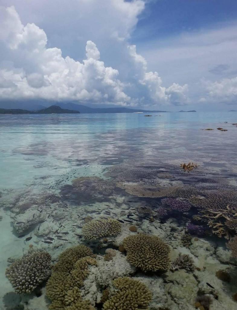 Parc naturel marin de Mayotte. Au sud de l'île, barrière de corail découverte lors d'une grande marée basse.