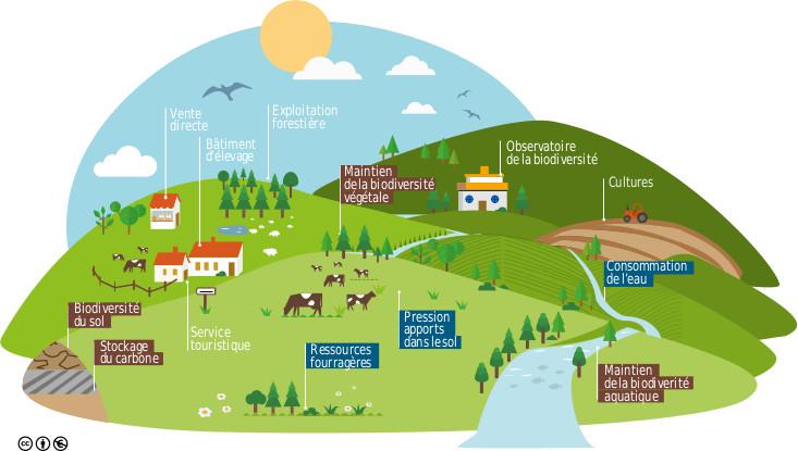 Usages et services liés au pastoralisme