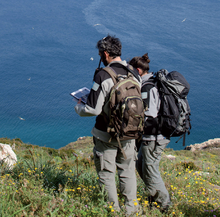 Une stratégie scientifique pour le réseau des parcs nationaux