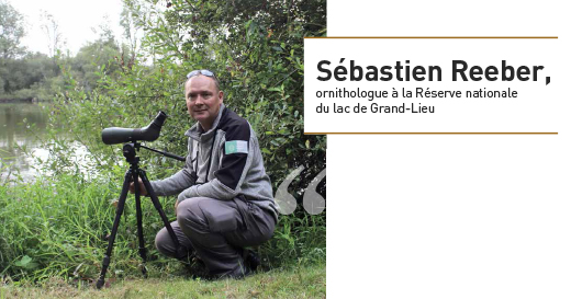 Sébastien Reeber, ornithologue à la Réserve nationale du lac de Grand-Lieu © SNPN