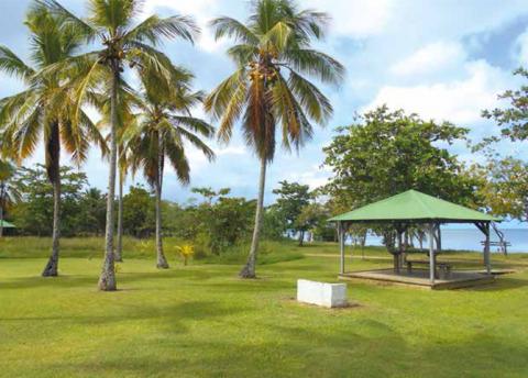 Le réaménagement et la gestion du site de Babin, espace naturel protégé, associent étroitement le Conservatoire du littoral, la ville de Morne-à-l'Eau et le Parc national de la Guadeloupe. © Éric Leopold - Ville de Morne-à-l'Eau