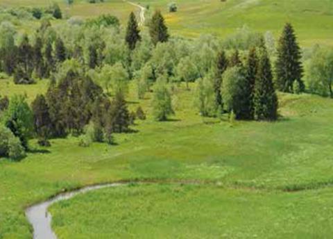 Tourbière du Nanchez, dans le Parc naturel régional du Haut-Jura. © Sylvain Moncorgé