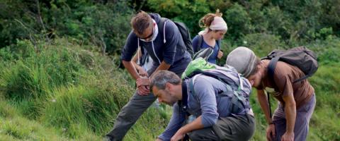 Pas de compétence ni de connaissance particulière à avoir pour faire partie du réseau d'observateurs du Parc naturel régional des Caps et Marais d'Opale, c'est le nombre qui fait la force de l'information.