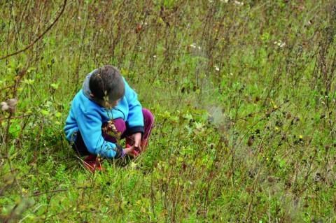 Convaincre au-delà d'un public de personnes engagées depuis toujours pour la biodiversité est une priorité.
