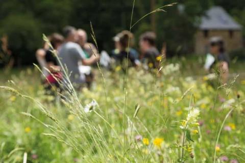 Botanistes, écologues, agronomes se retrouvent pour évaluer la qualité agro-écologique des prairies. © R. Kann - PNR Pyrénées Ariégeoises