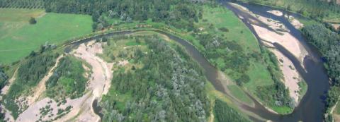Le Cen Auvergne a fait appel aux dons pour l'achat de parcelles en bord d'Allier (Puy-de-Dôme).
