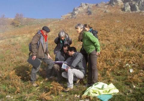 Formation au diagnostic éco-pastoral sur des parcours à ovins.