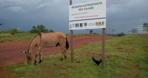 L'entrée d'une réserve extractiviste (unité de conservation habitée), Amapá, Brésil.