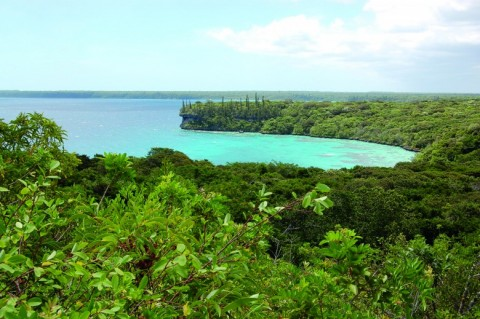 On trouve aussi le principe de non-régression dans le récent Code de l'environnement des Îles Loyauté, en Nouvelle-Calédonie.